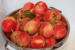 Oh the possibilities! (grace*c*) Tags: summer home fruit yum many flash peach peaches organic homegrown fromourtree wehadtopullem thekidsateabunchalready nowillcutandbakeandfreezetherest thisisonlyaboutaquarterofwhatcameoffthetree thebirdswerestartingtotakenotice tradedsomewiththeneighborsforstringbeansandsquash gavesooabigbag