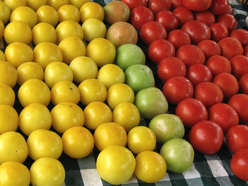 Chicago- Tricolor Tomatoes