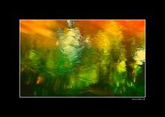 Endless Light in my wild river...!!! / Lumire sans fin dans ma rivire sauvage...!!! (Denis Collette...!!!) Tags: light wild canada reflection river photo searchthebest quebec lumire rivire safari reflet qubec chapeau walden collette photosafari impressionist denis endless thoreau sauvage portneuf wildriver impressionniste sansfin visiongroup deniscollette pontrouge infinestyle riviresauvage world100f