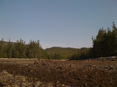IMG_0610 (intarwab) Tags: beach alaska sandybeach