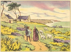 lande bretonne