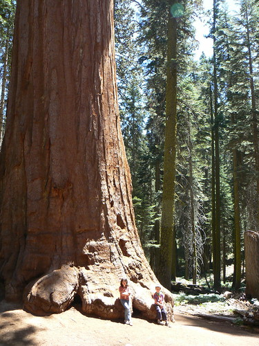 Ruth & Gage at base of Giant Sequoia