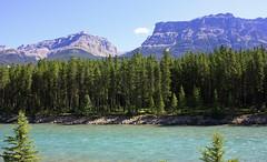 Bow River on the way to Lake Louise 7 (goobersmyn) Tags: banffnationalpark canadianrockies yohonationalpark banffjasperyohoglaciermtrevelstokenationalparks