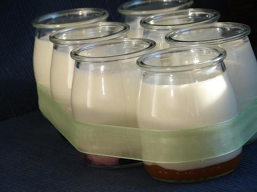iogurtes caseiros