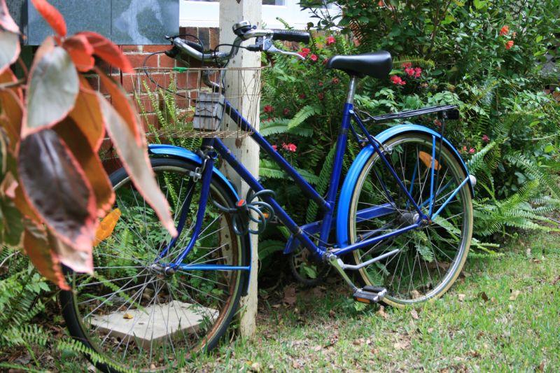 blue bike 1
