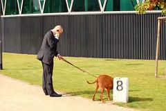 Mann mit Hund / Man with dog (hstraske) Tags: businessman handy frankfurt main hund mobilephone westhafen gassi geschftsmann