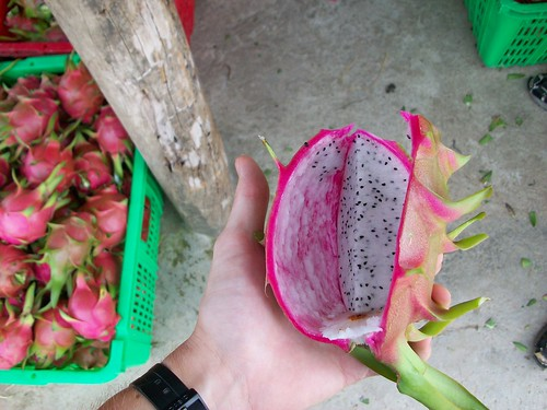 Open dragon fruit