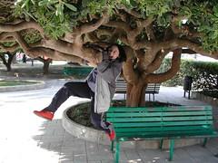 Flory Dinamica (Enzo Lanza) Tags: italy verde green colors garden bench children freedom student italia bambini swinging colori lungomare puglia giardini panchina pitosforo puglie