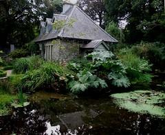 """Cottage (nz_willowherb) Tags: ireland garden see pond tour cottage visit wicklow to"""" visitireland """"go seeireland aboutireland"""