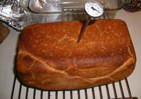 Taking the Temperature of Bread