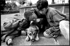 Homeless kids of Santa Veracruz Plaza (Duilio Rodriguez) Tags: street dog pet kids mexico death downtown homeless neighborhood muerte drug droga cocaine substance duilio alkaloid adict duiliorodriguez inhalingsolvents