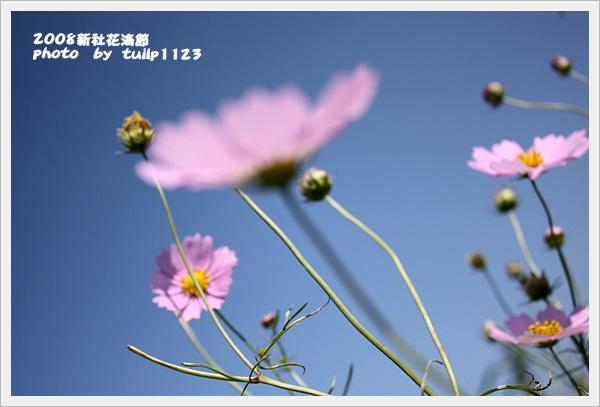 IMG_2102