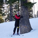 """Keith at Deer Valley - """"Tree Hugger"""""""