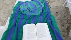 해변에서 책 보다