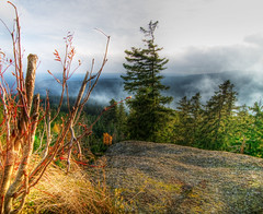 Harz Panorama (Xindaan) Tags: autumn fall nature forest germany landscape geotagged deutschland nikon bravo herbst natur tokina valley landschaft wald hdr harz 116 tal d300 naturesfinest sachsenanhalt photomatix 1116 schierke flickrsbest abigfave platinumphoto anawesomeshot impressedbeauty theunforgettablepictures 1116mm overtheexcellence goldstaraward worldwidelandscapes natureselegantshots 1116mmf28 goldenheartaward 100commentgroup vosplusbellesphotos 281116 geo:lat=5177317795 geo:lon=1066693672 lasttopshots