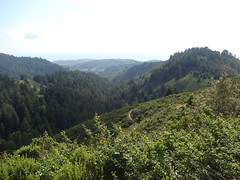 Whittemore_Gulch_Trail-13
