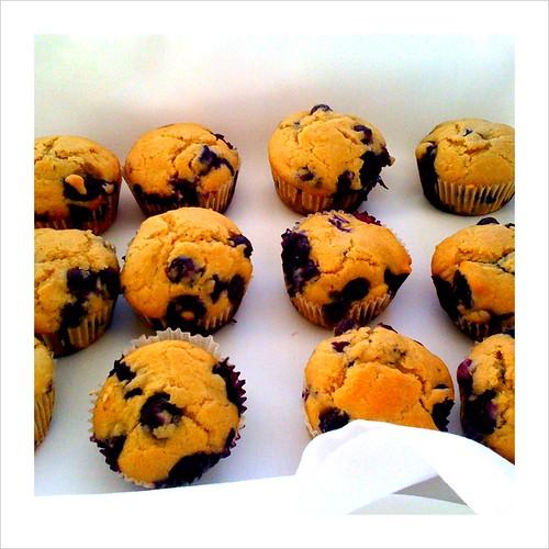 healthy blueberry muffins with stonyfield greek yogurt