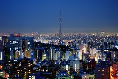 Hazy Skyline with Tokyo Sky Tree (hidesax) Tags: houses urban japan night buildings lights tokyo twilight nikon raw cityscape nightscape nightshot dusk nikkor hazy hdr aftersunset d90 3xp nikond90 tokyoskytree nikkor2470mmf28ged hidesax