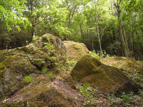 神野山の石文化@山添村-09