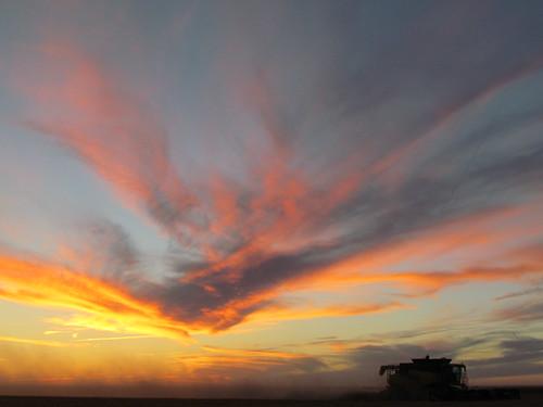 Kansas sunset.