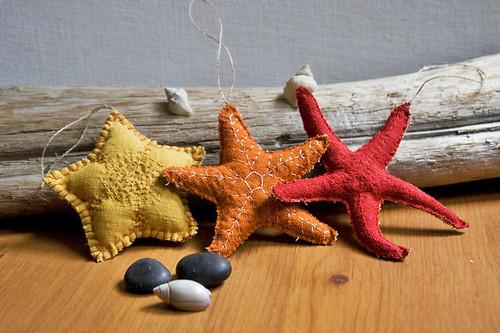 new sea stars