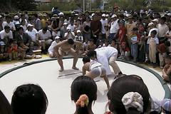 Children sumo