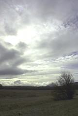 Clouds (zhafnium) Tags: cloud bush western prarie