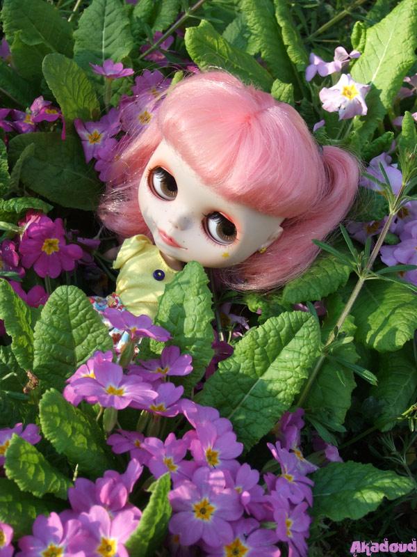 [Avril 2008] Des Blythes et des Fleurs 2385731132_b1c14b6c0e_o