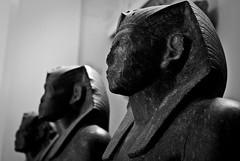 Egyptian Statues, The British Museum (Agnieszka Eile) Tags: england blackandwhite london art sculptures thebritishmuseum ancientegypt antiquities