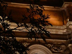 las hojas (net_jez) Tags: zacatecas sanluispotosi