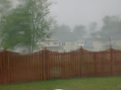 Storm in the Backyard