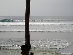 bali_may08_11 (spongercity) Tags: bali waves uluwatu bodyboarding bodyboard bodyboarder padangpadang spongercity