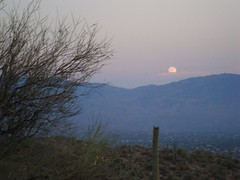 moonrise (azhiker_grrl) Tags: sunset arizona moon nature desert tucson hike fullmoon sabinocanyon blackettsridge