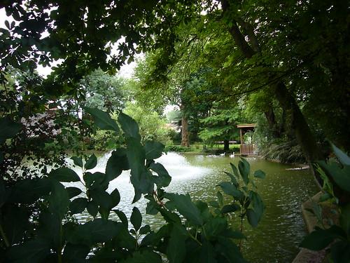 Le parc des Cygnes