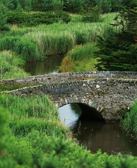 Redcross River, Ennereilly (Chris*Bolton) Tags: bridge river landscape stream wicklow soe redcross arklow artcafe fpc blueribbonwinner cherryontop bej totalphoto golddragon mywinners platinumphoto impressedbeauty aplusphoto ultimateshot diamondclassphotographer flickrdiamond ysplix theunforgettablepictures worldwidelandscapes natureselegantshots absolutelystunningscapes ennereilly damniwishidtakenthat worldglobalaward globalworldawards photoskillz