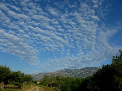altocumulus early morning sky (Marlis1) Tags: clouds spain 365 altocumulus elsports weatherphotography marlis1
