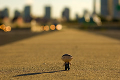 DoFin' Stewie (Js) Tags: bridge light shadow toronto cars sunshine skyline wednesday happy highway cityscape dof bokeh horizon 85mm overpass headlights stewie 85mmf18d hbw photoshopcs3 oneobject365daysproject