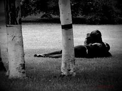 seed-bed (tallawah75) Tags: park boy white black tree love girl grass blackwhite hug kiss lovers romantic bigmomma challengeyouwinner ltytrx5 ltytr2 ltytr1 ltytr3 a3b pfogold cruzadasgold pfo:collection=valentines