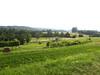 campo sloveno