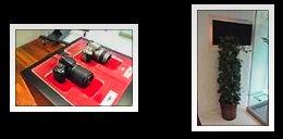 High ISO test photos pitting the Nikon D700 and Nikon D3 against each other