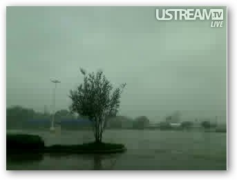 Hurricane Gustav Webcam: Winds Bend Trees