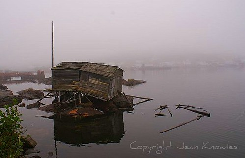 Abandoned fishing stage, Seldom Come By