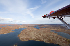 Crusin With the Windows Down! (Jason Pineau) Tags: airplane flying nt aircraft aviation nwt turbo otter northwestterritories seaplane floatplane dehavilland dhc3 airtindi cfzdv