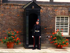 tower of london/ gaurd outside royal residents (top_gun_1uk) Tags: uk england london tower castle castles king towers royal palace queen queens kings henryviii toweroflondon royalpalace cityoflondon henrytheeighth mywinners abigfave royalresidents