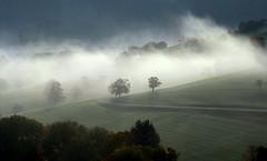 Morning mist (ceca67) Tags: morning trees mist nature switzerland fields blueribbonwinner mywinners platinumphoto theunforgettablepictures theperfectphotographer flickrclassique flickraward serbianphotographers platinumpeaceaward