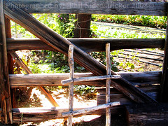 Wood Gate with a Little ladder (phil_sidenstricker) Tags: wood plants tree nature lines gate ladder donotcopy valleyofthesunphoenixmetro upcoming:event=981998 southmountainfarmphoenixazusa
