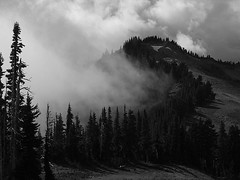 Bogachiel Peak (Mike Dole) Tags: washington olympics olympicnationalpark highdivide bogachielpeak