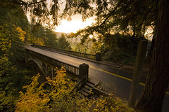 IMG_5814 (sweber4507) Tags: bridge autumn sunset fall leaves oregon forest river gold leaf columbia gorge