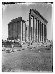 - palmyra (tadmur) -syria (tummaleh) Tags: pictures old countries arab     ilamic