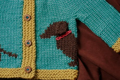 Willie up close. (flint knits) Tags: dog baby kids sweater knitting pattern knit dachshund wiener willie intarsia